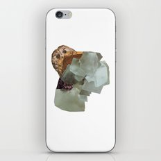 Cryptic iPhone & iPod Skin