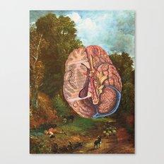 Brainscape Canvas Print