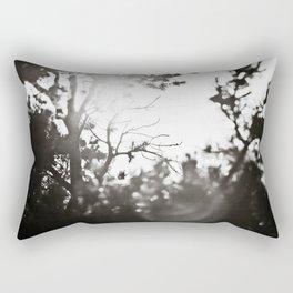 Arizona Air Rectangular Pillow
