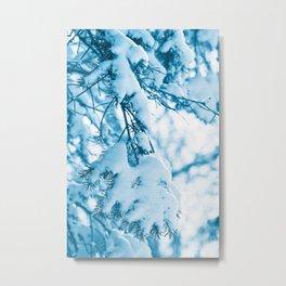 Snowy Spruce Needles 21 Metal Print