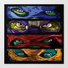 Turtle Power Canvas Print
