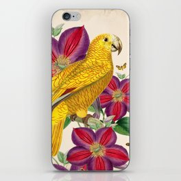 Oh My Parrot V iPhone Skin