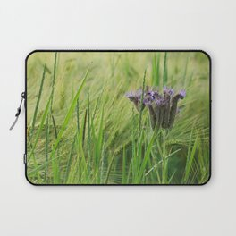phacelia in a barley field Laptop Sleeve