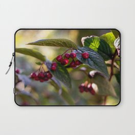 Poison or not : Red berries and green leaves Laptop Sleeve