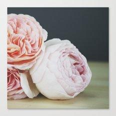 June Roses Canvas Print