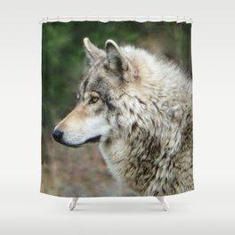 Portrait of a Grey Wolf Shower Curtain