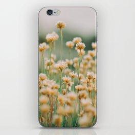 Vintage Chamomile Wildflowers iPhone Skin