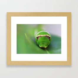 Caterpillar Three Framed Art Print