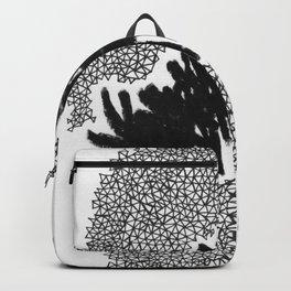 Triangulation Backpack