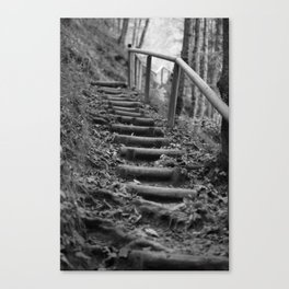 Wooden stairs, black and white photo Canvas Print