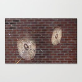 Spinners. Canvas Print