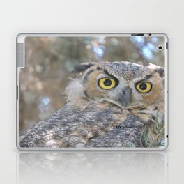 Young Owl at Noon Laptop & iPad Skin