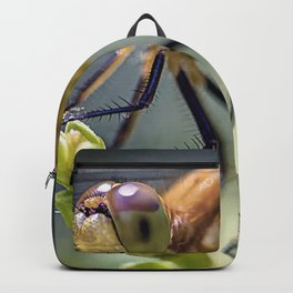 Dragonfly Closeup Backpack