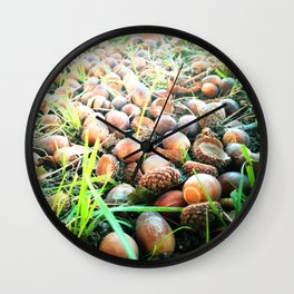 Don't go nuts! Wall Clock