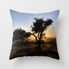 Singular Almond At Gold Sunset Throw Pillow