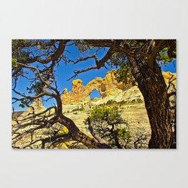 White Mesa Canvas Print