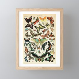 Papillon I Vintage French Butterfly Charts by Adolphe Millot Framed Mini Art Print
