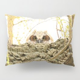 I see you Pillow Sham