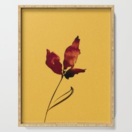Floral Abstract No.2s by Kathy Morton Stanion Serving Tray