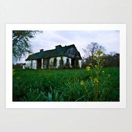 Dilapidated Farm and Mustard Seed Art Print