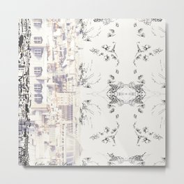 Toit de Paris Metal Print