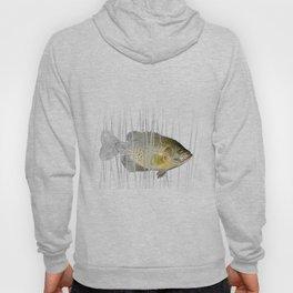 Black Crappie Fish Hoody