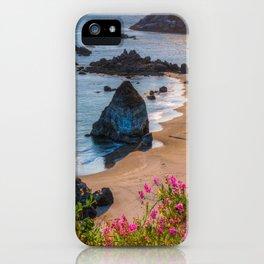 Rocky Oregon Coast iPhone Case