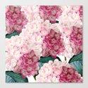 Pink Hydrangea by julianarw
