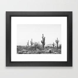 DESERT / Scottsdale, Arizona Framed Art Print