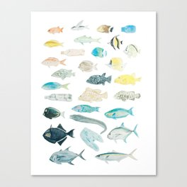 The Inhabitants of the Waters of Clipperton Atoll 1 Canvas Print