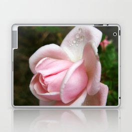 Blooming Light Pink Rose with Water Drops Laptop & iPad Skin