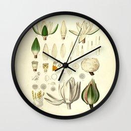 Waterlily Botanical Art Print  Wall Clock