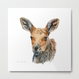 Little Moose by Teresa Thompson Metal Print