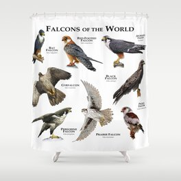 Falcons of the World Shower Curtain