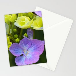 Hydrangeaceae Stationery Cards