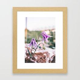 Fairy Flowers Framed Art Print