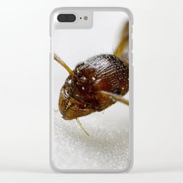 Extreme Macro Ant on a Clematis petal Clear iPhone Case