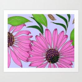 Echinacea on Lavender Art Print