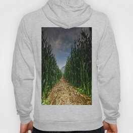 Corn Field Hoody