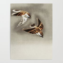 Sparrows mid flight - Japanese vintage woodblock print Poster