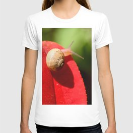 Snail on red leaf T-shirt