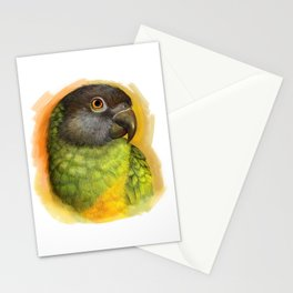 Senegal parrot realistic painting Stationery Cards