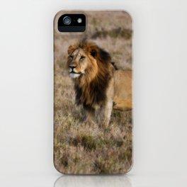 African Lion in Kenya iPhone Case