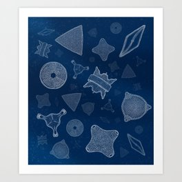 Diatoms - microscopic sea life Art Print