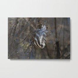 Wetlands Feather Metal Print