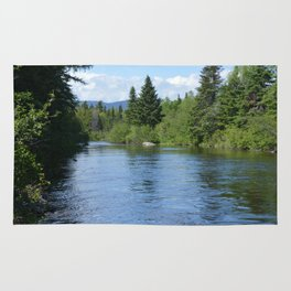 Lazy River Rug