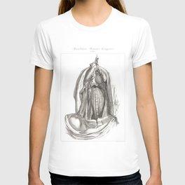 Human Anatomy Art Print ESOPHAGUS THROAT NECK Vintage Anatomy, doctor medical art, Antique Book Plat T-shirt