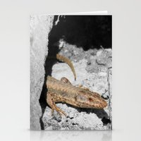 lizard Stationery Cards featuring Lizard by Anja Kidrič AdAk