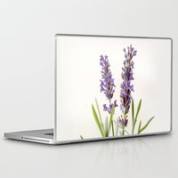lavender Laptop & iPad Skins featuring Lavender by 83 Oranges™