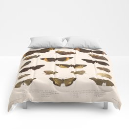 Vintage Scientific Hand Drawn Illustration Anatomy Of Butterfly Insect Patterns Biology Art Comforters